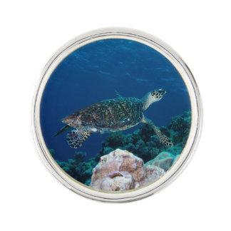 Havssköldpaddaslag klämmer fast kavajnål