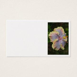 Hawaiansk hibiskus visitkort