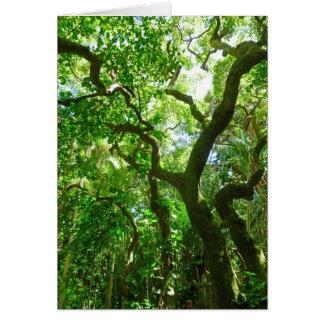 Hawaiansk regnskog hälsningskort