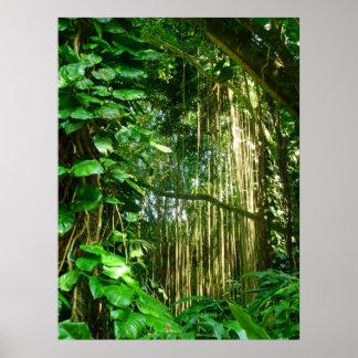 Hawaianska djungelVines Poster