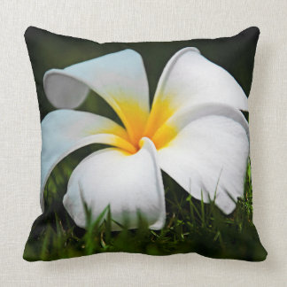 Hawaii för vitPlumeriaFrangipani blomma Kudde