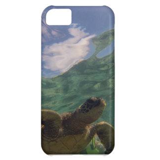 Hawaii havssköldpadda iPhone 5C fodral