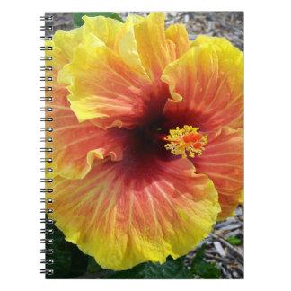 Hawaii hibiskusblommor anteckningsbok med spiral