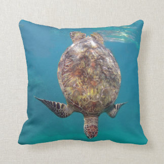 Hawaii sköldpaddasnäcka kudde