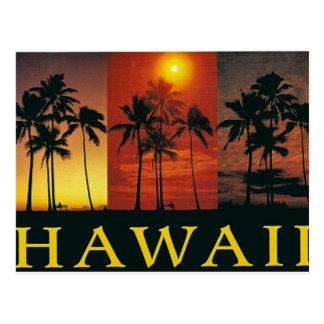 Hawaii vintagevykort vykort
