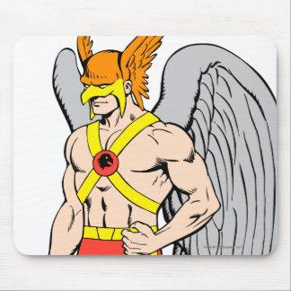 Hawkman anseende poserar musmatta