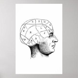 Head anatomiillustrationaffisch poster