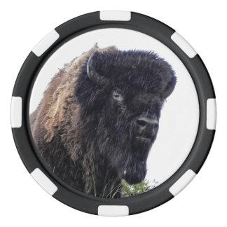 Head pokerchiper för buffel poker marker