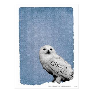 Hedwig 2 vykort