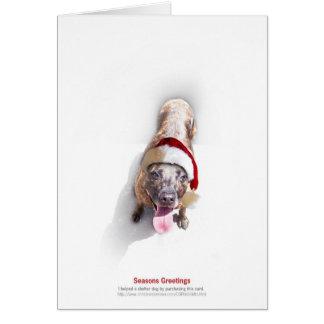 Helgdagskyddhund 2 hälsningskort