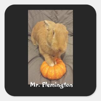 Herr Flemington klistermärke