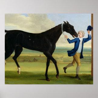 "Hertigen av Rutlands ""Bonny svart"", c.1720 (olje-  Poster"