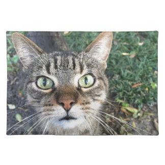 """""""Hey dig"""" något att säga denna katt Bordstablett"""