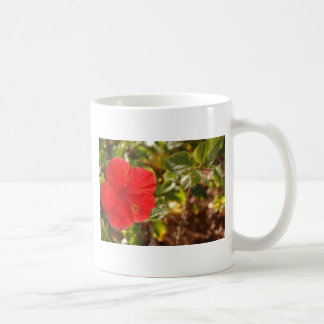 Hibicus Kaffemugg