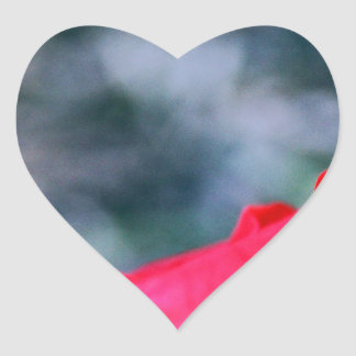 Hibiskus 4 hjärtformat klistermärke
