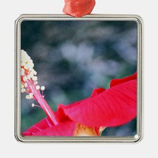 Hibiskus 4 silverfärgad fyrkantigt julgransprydnad
