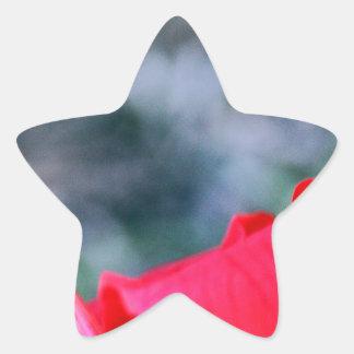 Hibiskus 4 stjärnformat klistermärke