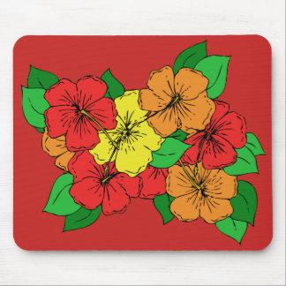 Hibiskusen blommar ROY Musmatta