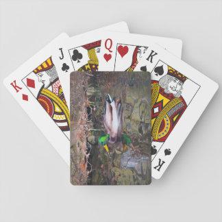 Hillcrest anka spel kort
