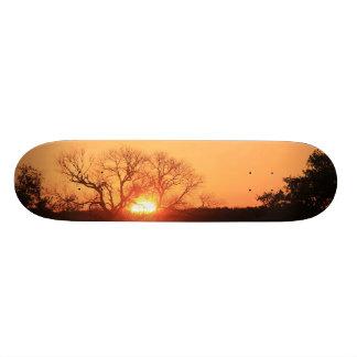 Himmel avfyrar på; Skateboard för soluppgång för