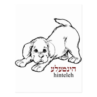 """""""Hinteleh"""" - valp Vykort"""
