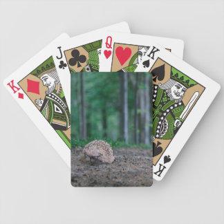 Hipsterigelkott som leker kort spelkort