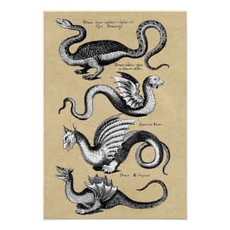 Historia av drakeväggen kartlägger poster
