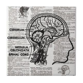 Hjärnordbokkonst belägger med tegel liten kakelplatta
