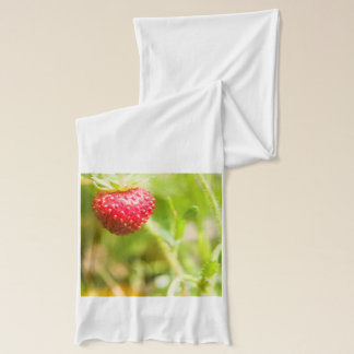 Hjärtformade jordgubbe sjal