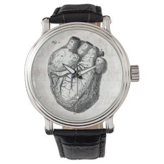 Hjärtor för anatomi för vintage1800shjärta Retro Armbandsur