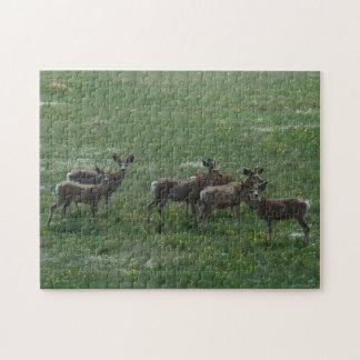 Hjort för Mule D0007 Jigsaw Puzzles