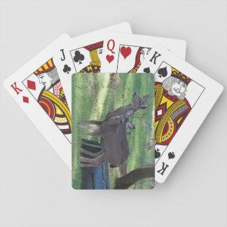 Hjort för två som Blacktail leker kort Spel Kort
