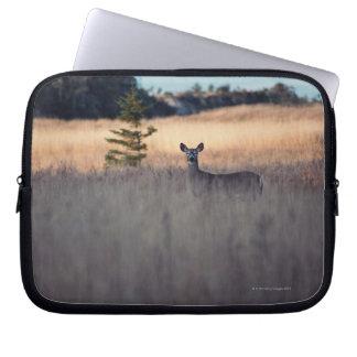 Hjort i fält av högväxt gräs laptop sleeve