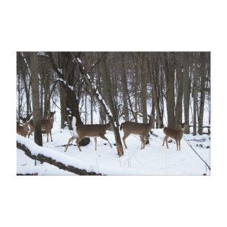 Hjort i skogen slogg in kanfas canvastryck
