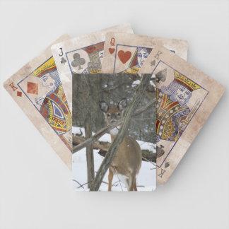 Hjort i skogen som leker kort kortlek