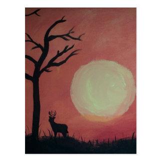 Hjort i sunset.jpg vykort