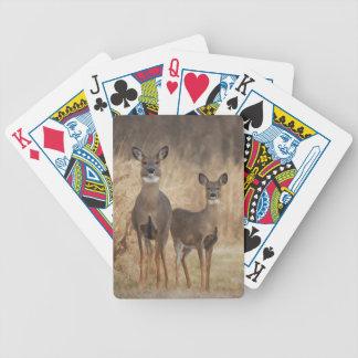 Hjort på den arga vägen i en höstinställning spelkort