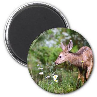 Hjort på gå magnet rund 5.7 cm