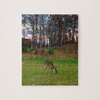 Hjort på solnedgånggolfbana pussel med foto