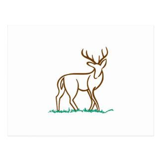 Hjort skisserar vykort