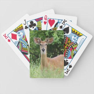 Hjort som leker kort spelkort