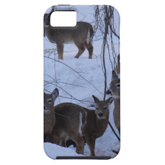 Hjortfamilj iPhone 5 Case-Mate Fodraler