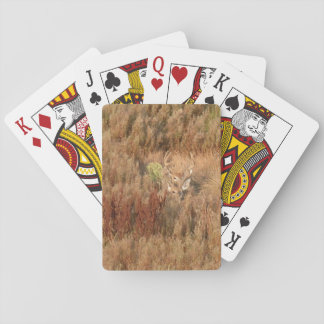 Hjortkamouflage i borsta casinokort