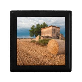 Höbal i det Provence fält Presentskrin