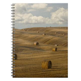 Höbaler och rullande landskap, Tuscany, italien Anteckningsbok