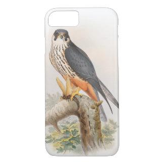 HobbyfalkJohn Gould fåglar av Storbritannien