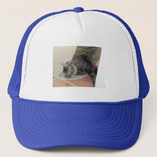 Hobie katt, hatt keps