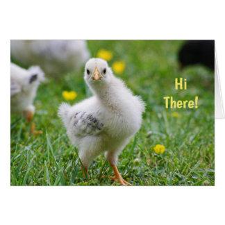 Högt behandla som ett barn det chickglad påsk hälsningskort