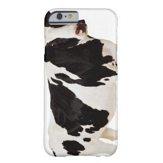 Holstein ko (Bostaurusen) Barely There iPhone 6 Skal