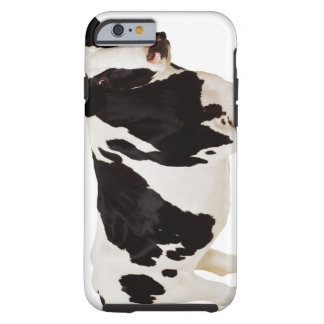 Holstein ko (Bostaurusen) Tough iPhone 6 Case